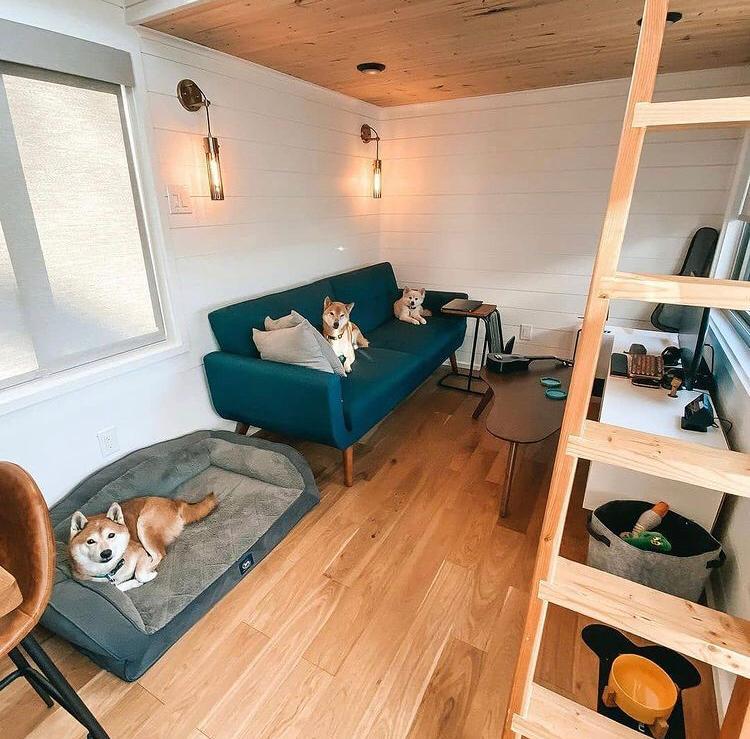 casas contenedores por dentro, casa contenedor interior, Diseño interior casa contenedor por dentro